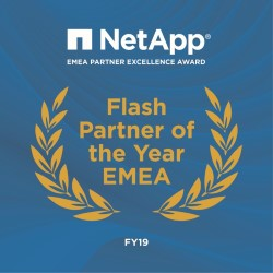 Flash Partner of the Year.jpg